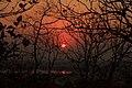Sakoli sunset - panoramio.jpg