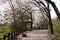 Sakurayama Park Promenade in Kohoku.jpg