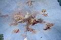 Sala della caccia, affreschi di giuseppe gricci, volta con carro dell'Aurora e Diana cacciatrice 02.JPG