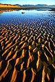 Sand ripples at Llanddwyn.jpg