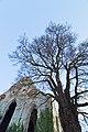 Sankt Nicolaus ruin.jpeg