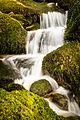 Sasbachwalden Gaishöll Wasserfälle (14821082493).jpg