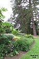 Savill Garden (36529249143).jpg
