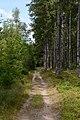 Schönwald im Schwarzwald Schneckenwanderweg 20180808.jpg