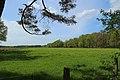 Schale Naturschutzgebiet Wehrstroot 12.JPG