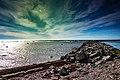 Seascape Newfoundland (27493270508).jpg