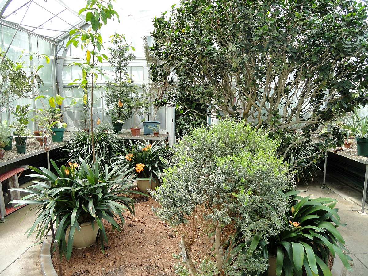 Wellesley College Botanic Gardens Wikipedia