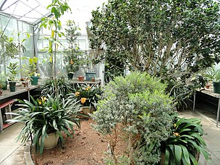 Wellesley College Botanic Gardens