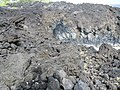 See the lava tube - panoramio.jpg