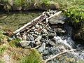 Selbstgebauter Staudamm.JPG