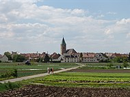 Special crops in Sennfeld at the gates of the city