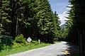 Seymour Mainline - panoramio.jpg