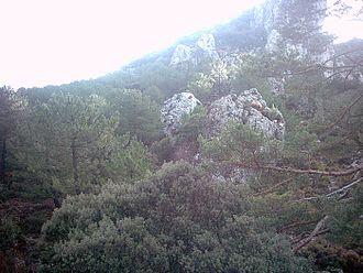 Subbaetic System - Sierra de Huétor, Alfacar, Granada Province