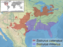 Sistrurus sp. distribution.png