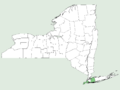 Smilax pseudochina NY-dist-map.png