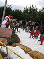 Snow dec 2009 006.jpg