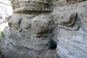 Soft-sediment deformation structures - Large soft sediment deformation structures in turbidites, SE Spain. These are probably best described as flame structures, or perhaps ball-and-pillow structures. Backpack is around half a meter high. A small reverse fault runs through the outcrop in the centre of the image.