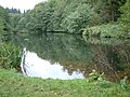 Soudley Ponds Nature Reserve - geograph.org.uk - 60731.jpg