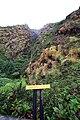 Soufrière, Guadeloupe, eboulement Faujas.jpg