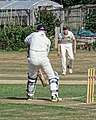 Southwater CC v. Chichester Priory Park CC at Southwater, West Sussex, England 011.jpg