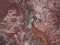Specularite & reddish hematite dust-covered specularite (Soudan Iron-Formation, Neoarchean, ~2.69 Ga; ceiling of stope at the 27th level of the Soudan Mine, Soudan, Minnesota, USA) 2 (18408240044).jpg