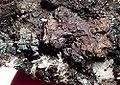 Sphalerite-Bornite-Enargite-135280.jpg