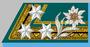 Stabsoberjäger k.k. Gebirgstruppe 1907-14