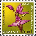 Stamps of Romania, 2007-018.jpg