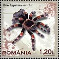 Stamps of Romania, 2010-11.jpg