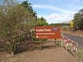 Starr-130610-4742-Thespesia populnea-habit with refuge sign-Kealia Pond NWR-Maui (24844160419).jpg