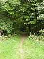 Start of Ivythorn Hill footpath - geograph.org.uk - 1448515.jpg