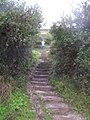 Steps on the coast path - geograph.org.uk - 268728.jpg