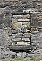 Sternus vulgaris -Clarinbridge, Galway, Ireland -nest-8.jpg