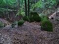 Stezka Jestřebice - Šemanovický důl.jpg