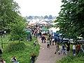 Strawberry Fair 2008, Cambridge - geograph.org.uk - 841023.jpg