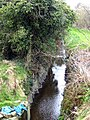Stream off the Old Belfast Road, Bangor (1) - geograph.org.uk - 756875.jpg