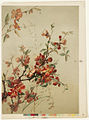 Study of Japan Quince (Boston Public Library).jpg