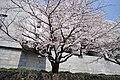 Supreme Court of Japan-2b.jpg
