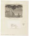 Synotus barbastellus - 1700-1880 - Print - Iconographia Zoologica - Special Collections University of Amsterdam - UBA01 IZ20800095.tif