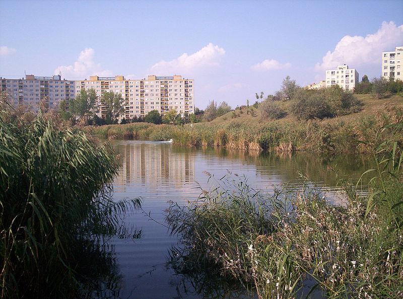 A tó és a szánkódomb dél felől nézve, még a 2009-es kotrás előtt