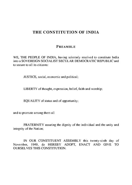 posner constitution in national emergency essay