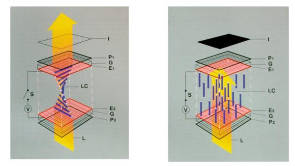 Twisted nematic field effect - Wikipedia