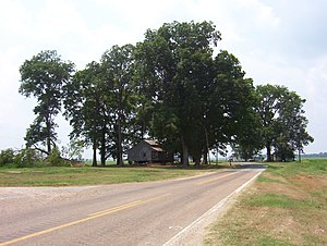 Tennessee State Route 19 - SR 19 in Golddust (2008)