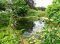 Teich beim Spritzenhaus 01.jpg
