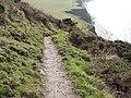 The Ceredigion Coastal Path - geograph.org.uk - 1169050.jpg