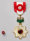 The Order of the Rising Sun, Gold Rays with Rosette.png