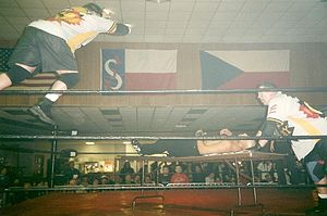 The Public Enemy (professional wrestling) - The Public Enemy performing a double team maneuver.