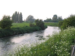 River Ivel - The river at Biggleswade