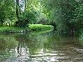 The River Wylye - geograph.org.uk - 478776.jpg