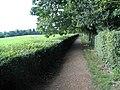 The Sand Walk, Down House - geograph.org.uk - 680266.jpg